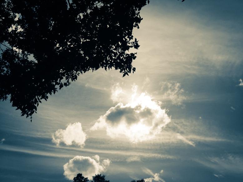 Maybe-Sky