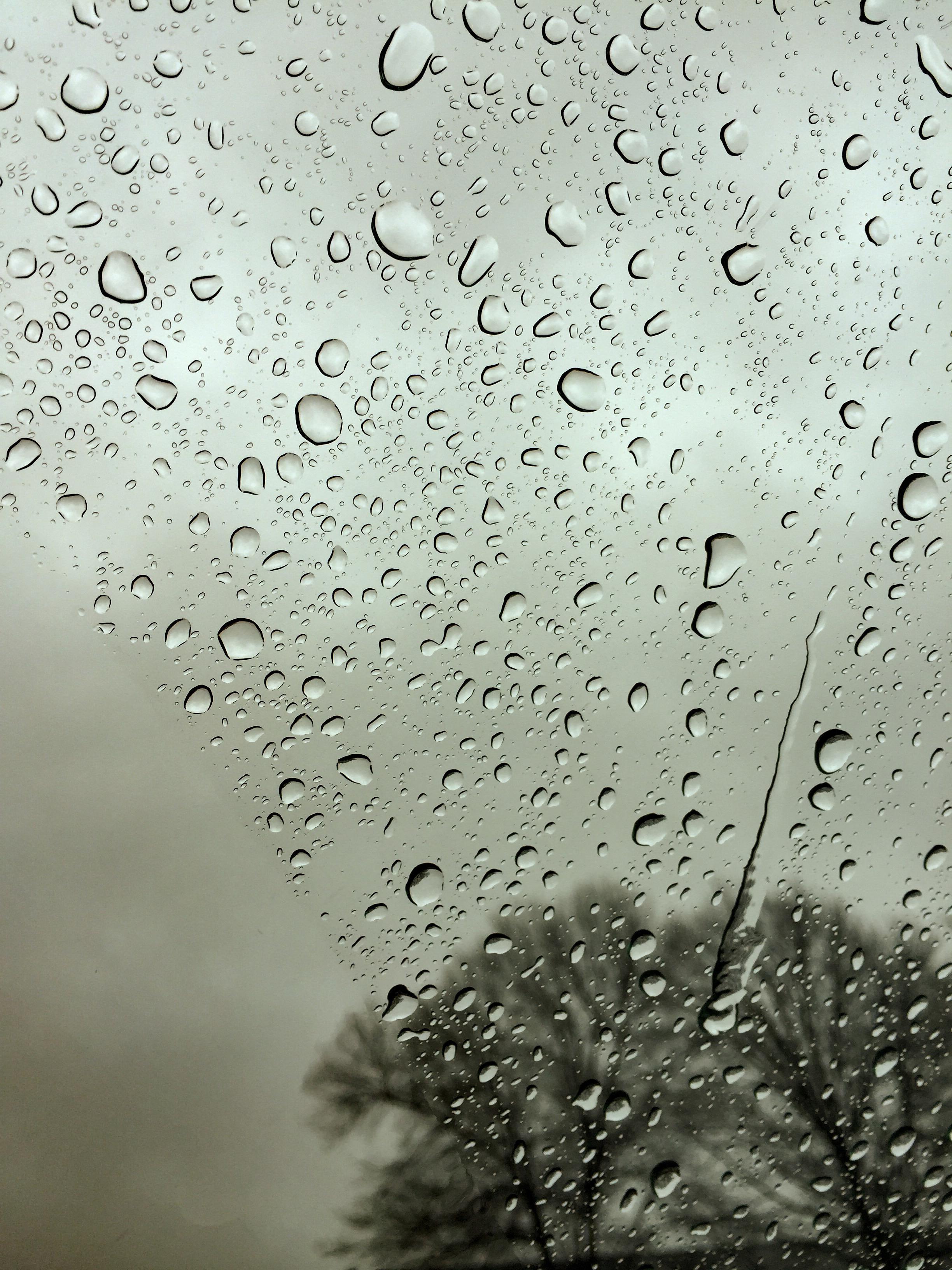 RainyWindshieldSummer